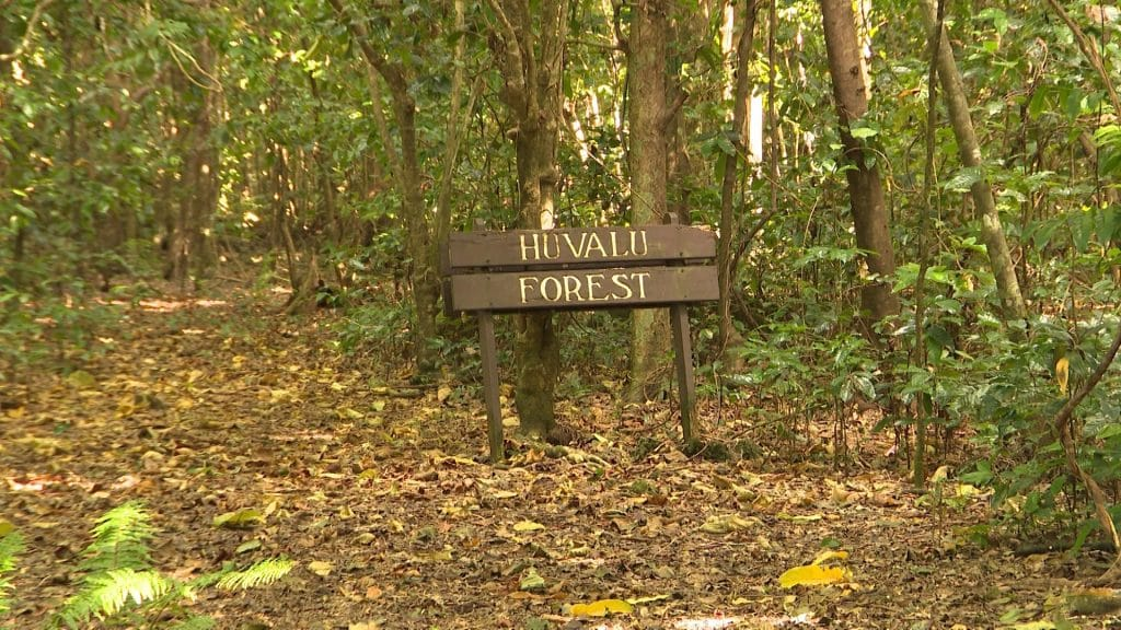 The Ridge to Reef project is holding talks with the communities of Hakupu and Liku to determine the way forward for the development of the Huvalu Forest Conservation Area by…