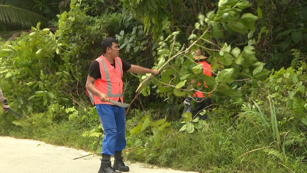 Only four Indonesian workers remain working on the island from the initial 8 Indonesian workers who were brought to Niue to help aid the labour shortage.  All are male workers residing…