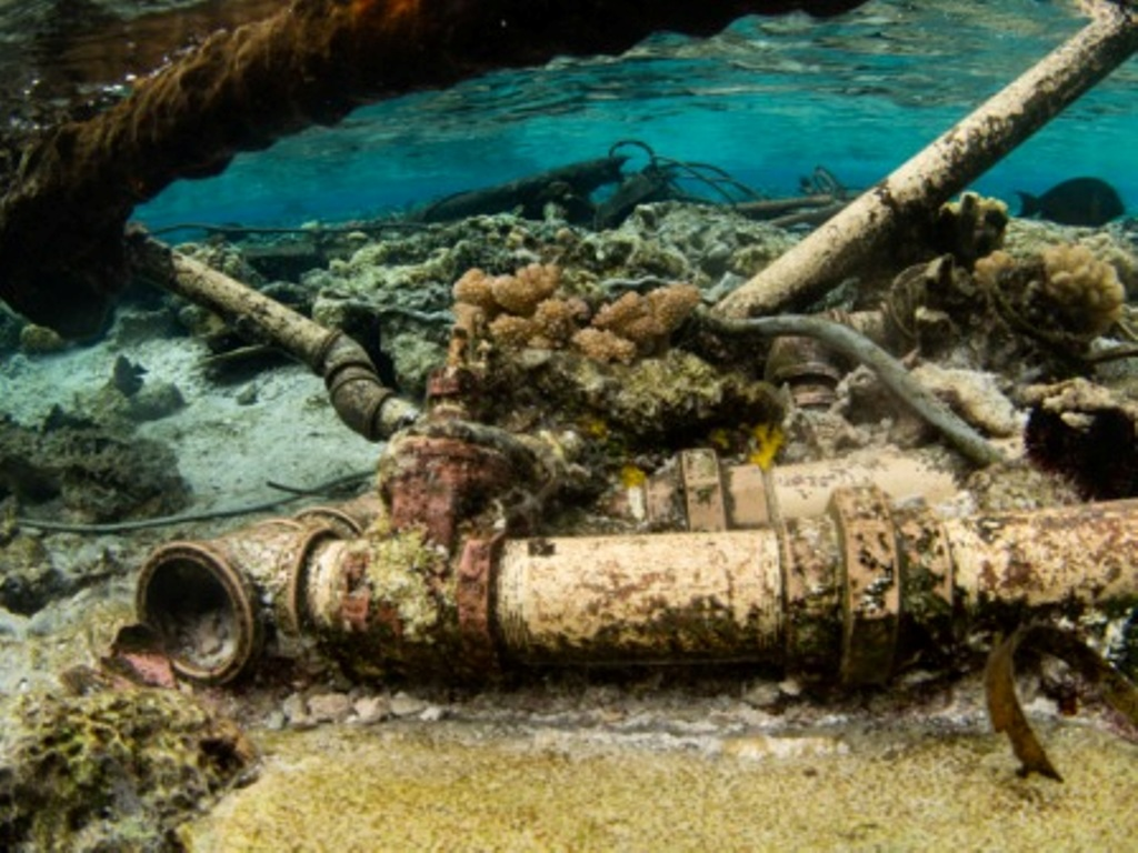 New footage shows one of the old wrecks at Beveridge Reef that has made the pristine seas destination its permanent home bringing the total documented number of wreckage's to…