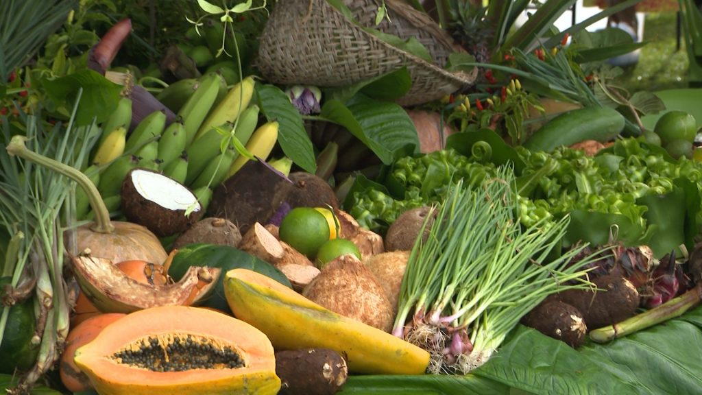 The school grounds at Paliati was the venue for the National Show day last Friday.  The three highlight events on the day were the World Food Day activities organized…