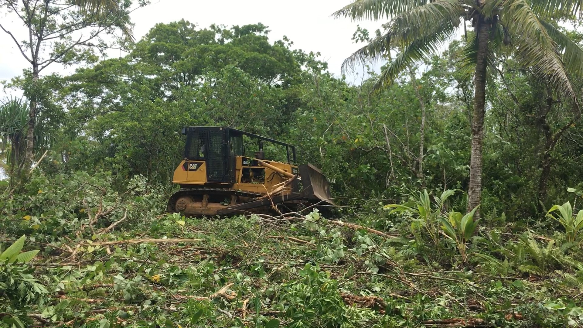 The Niue Growers Association is calling on the government to do something about the lack of working bulldozers on the island.   NPNC which is responsible for the bulldozers confirmed that…